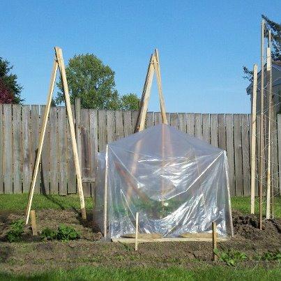 Beginning of backyard garden