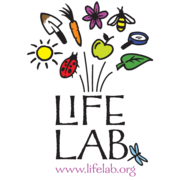 Food Lab: The Kitchen Classroom