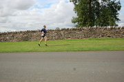 Oxfordshire dry stone wall (with runner)