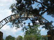 Beardens - Blair Cemetery