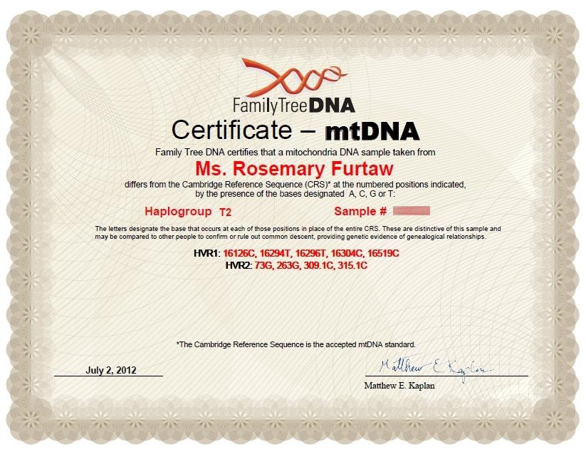 T2 Haplogroup