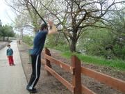 Fence jump 2