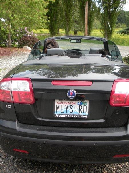 miily's car