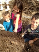 Plant Pico Day in Rancho Park - Getting in Touch with our Roots