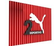 Puma deportivo