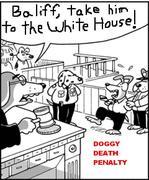Doggy death penalty copy