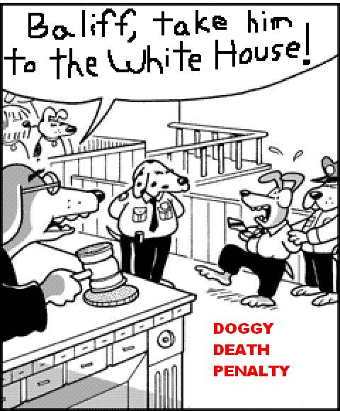 Doggy death penalty copy