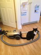 My Turn to Vacuum