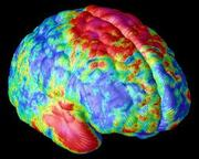 Learning With the Adult Brain in Mind