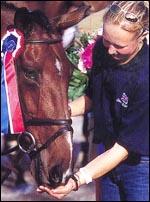 Horse Jobbers by HorseJobs.ca