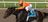 Race Horse Syndicate