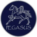 PEGASUS Helmets