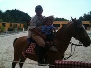 Equine Therapy for Autism