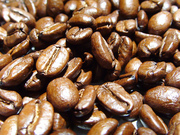 Todo sobre el mundo del Café