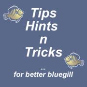 TIPS, HINTS N TRICKS FOR BETTER BLUEGILL
