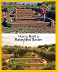Collaborate to write a Food Growing book