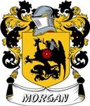 Morgan Surname