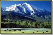 Roaring Fork Valley Spec…