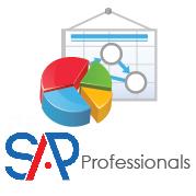 SAP Professionals