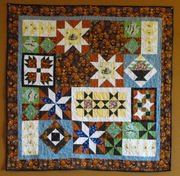 Perfect Points Sampler Quilt Along