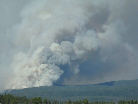 The Lehardy Fire - Yellowstone Park