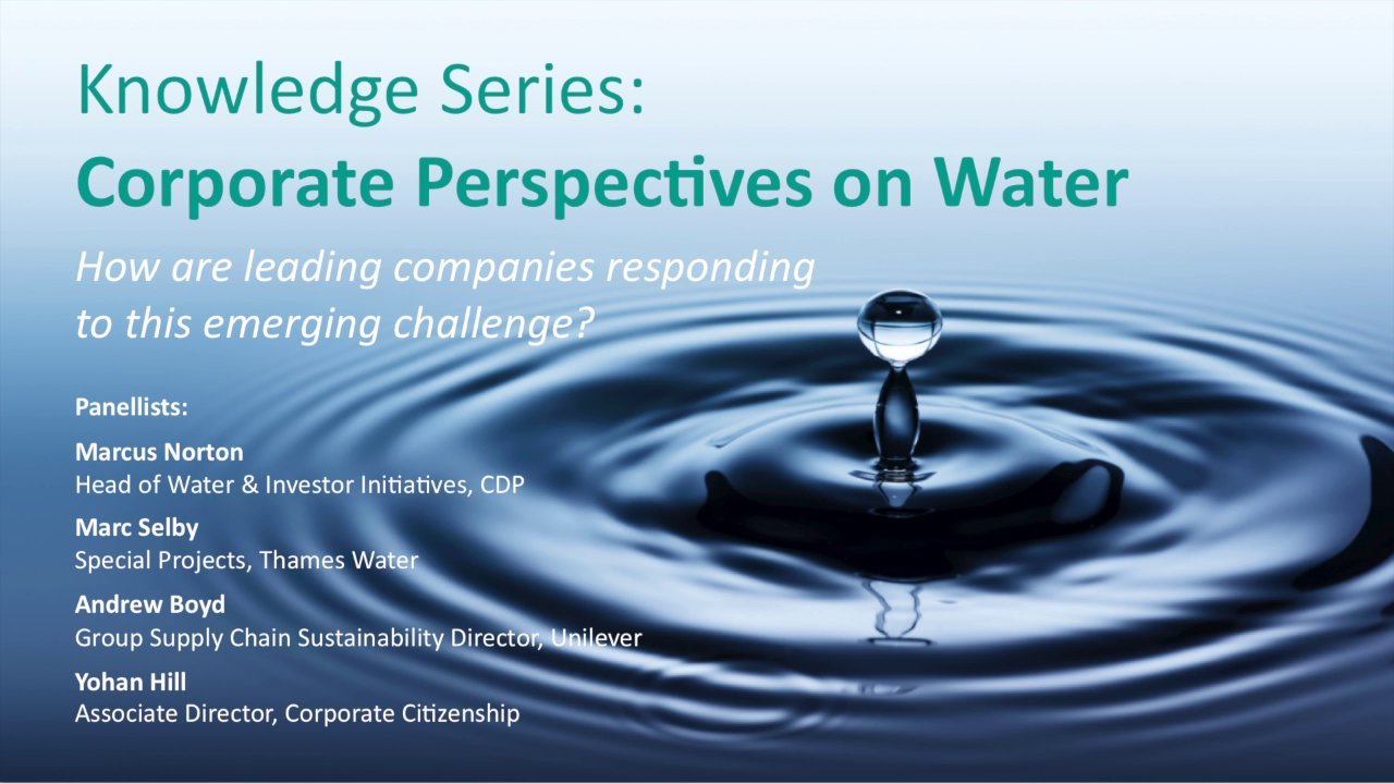 Corporate Perspectives on Water
