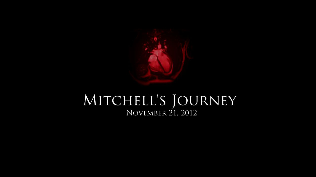 Mitchell's Journey - Photo Essay: No Exit