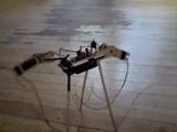 New Walking Twitchie Robot