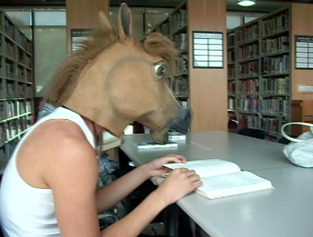 culturehub - adventures of the crazy horse