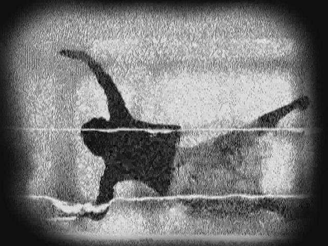 Patrick K.-H. ANIMATION: Dee