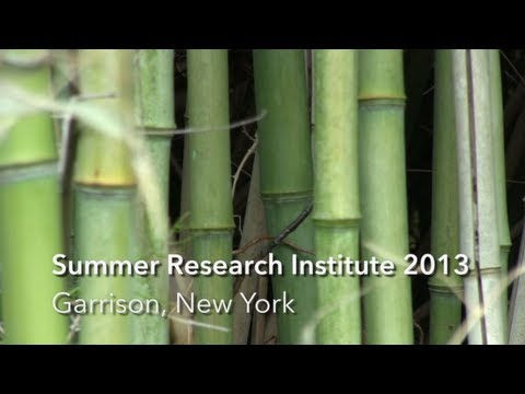 Mapping the Mind - Summer Research Institute 2013