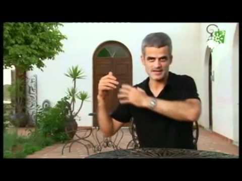 Reportaje Costa Contemporánea 2011