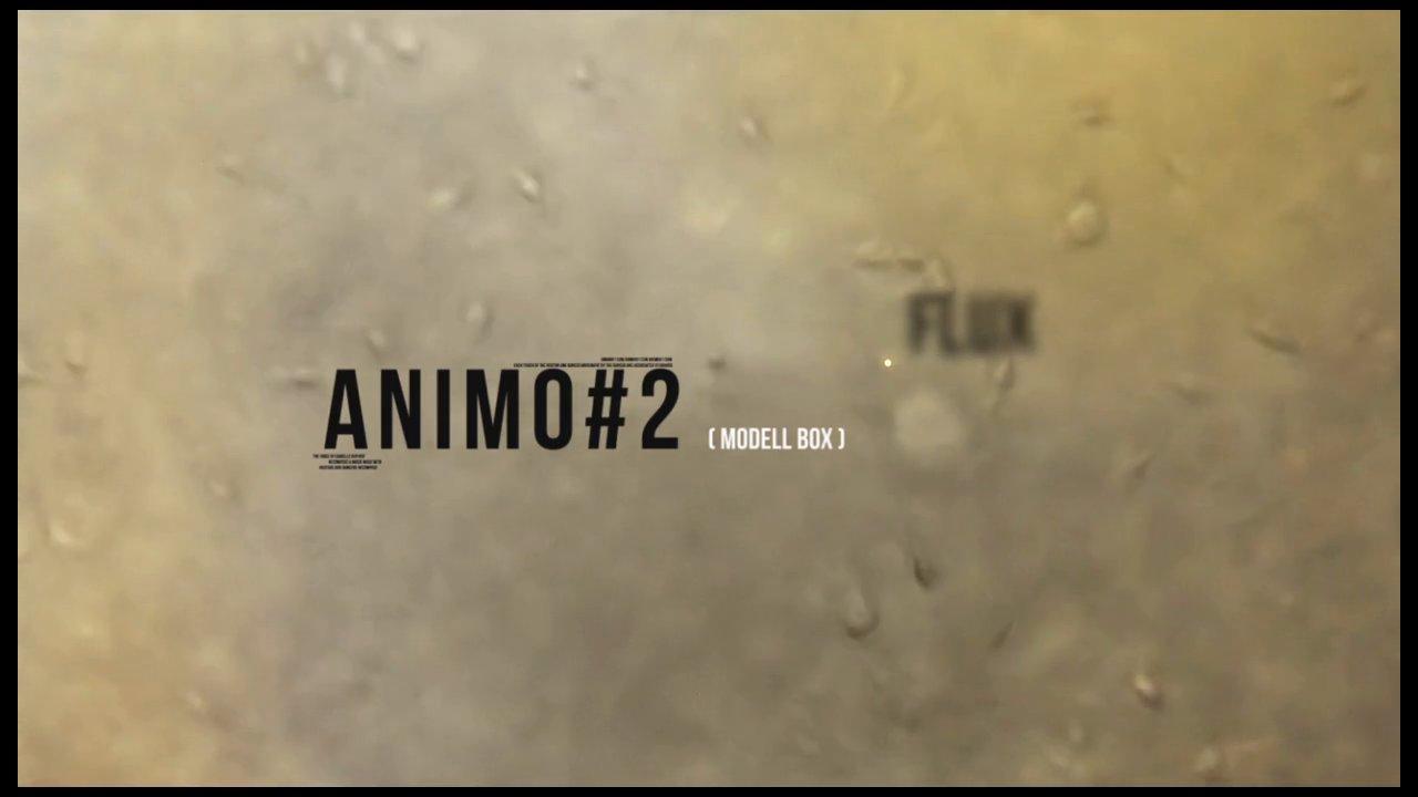 ANIMO ( A#1trailer 2014 et A#2maquette 2015)