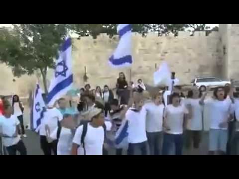Young American Jew Stands up for Palestine You Won't Believe what Happens Next
