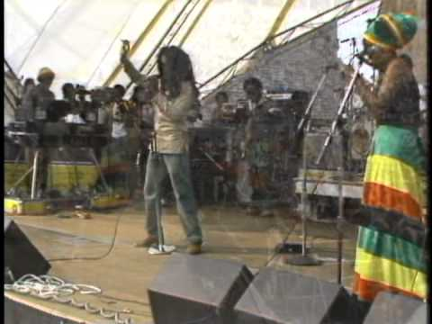 Bob Marley & The Wailers live at the Amandla Festival ✡ Harvard Stadium, Boston, Massachusetts