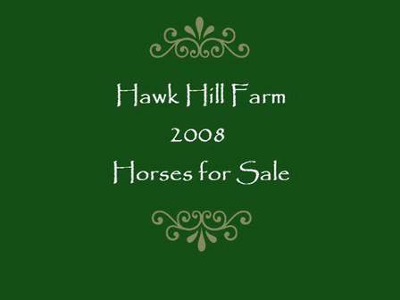 2008 Hawk Hill Sale catalogue