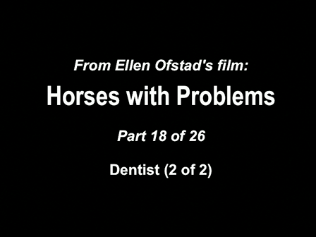 18-26 Horses with Problems - Equine Dentist 2-2