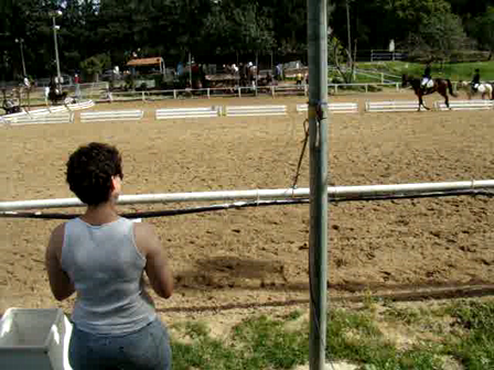 A part of my sister's dressage test