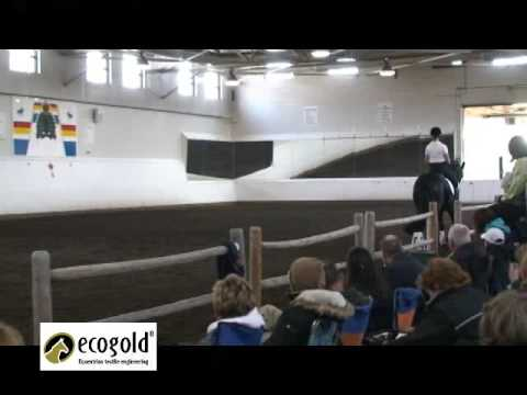 Part 3/3 Steffen Peters with Andrea Bresee & Discansano - OADG Clinic May 09
