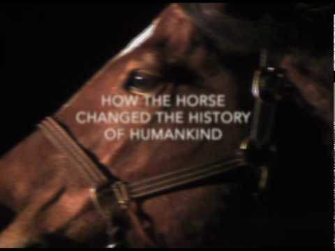 How the Horse Changed History