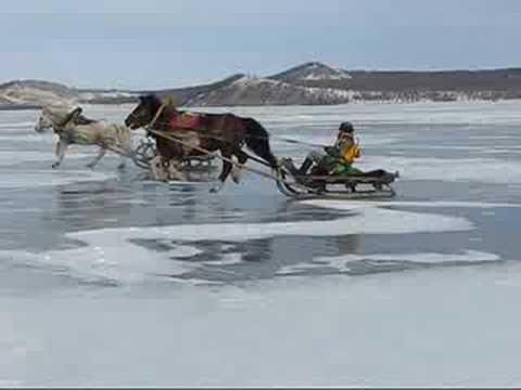 Horse Racing on Ice!