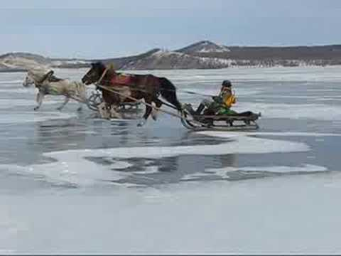 Horse Racing on Ice!