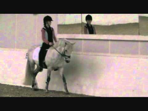 Pony For Sale: Oke Doke being ridden by a JR