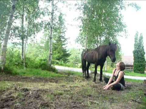 Meditation practice with a horse