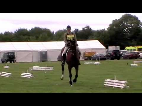 Purston Manor Novice with Jimmy, Tilly & Wally