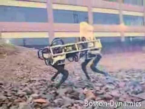 Crazy Robotic Mule