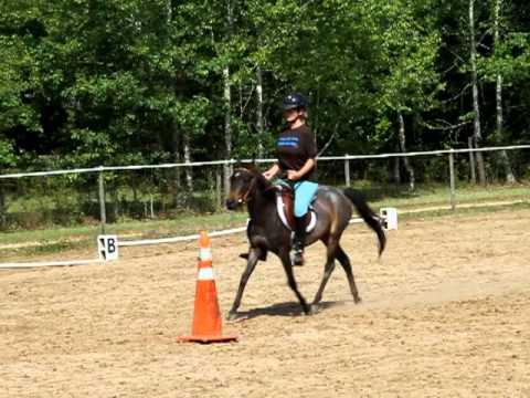 Galiceno NiNa and Heidi get some English riding lessons/