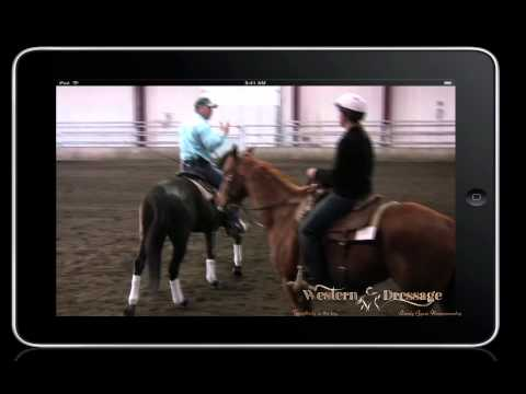 Counter Canter Lead Changes