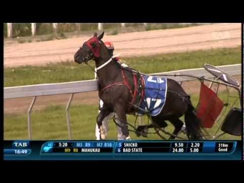 Driver Zac Butcher: Amazing Horsemanship on a Trotter Track!