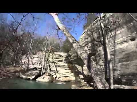 Gaited Horses In Shawnee National Forest with Go Pro